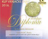 kup-vrnjacka-banja-14